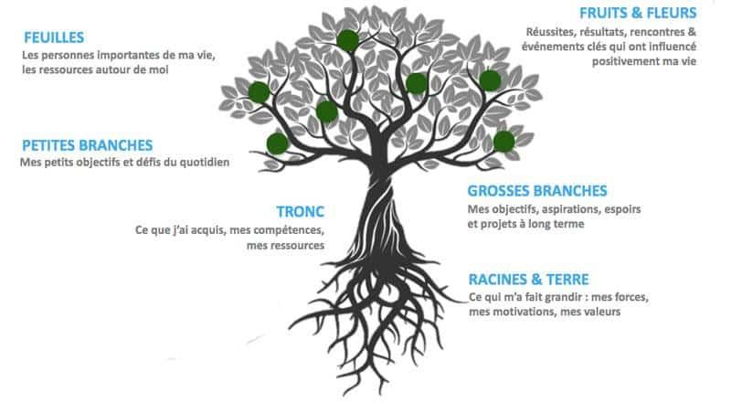 dessin arbre de vie avec objectifs de vie